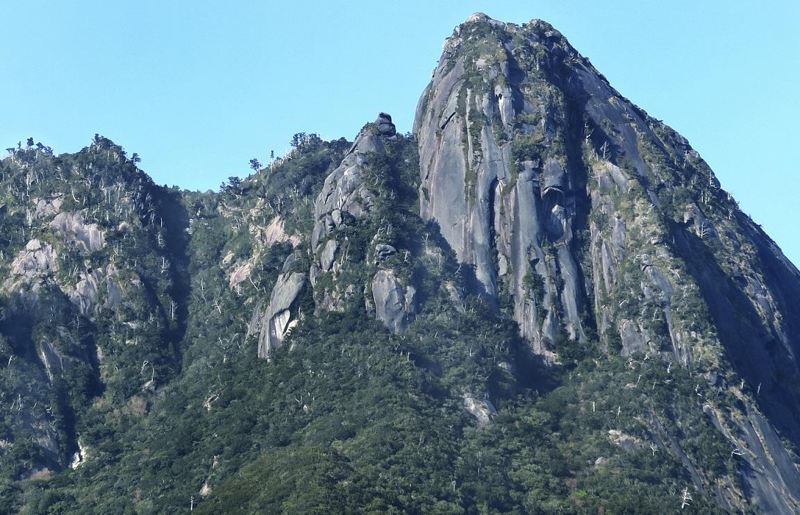 Berg auf Yakushima