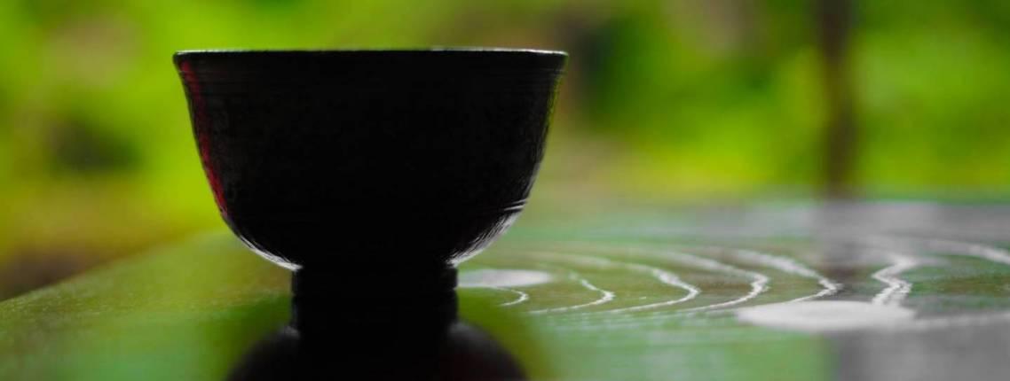Teeschale vor grünem Hintergrund