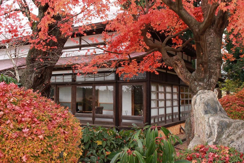 Ninigi Cafe in Akita