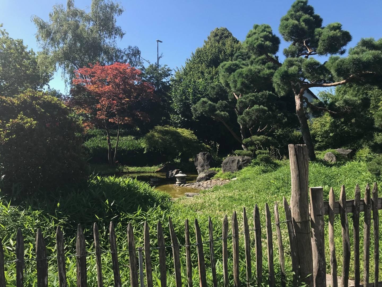 Der Japangarten in Bietigheim-Bissingen.