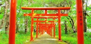 Fushimi Inari-Schrein in Sapporo.
