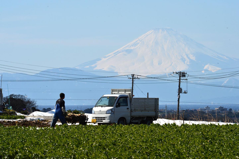 Fuji auf Miura