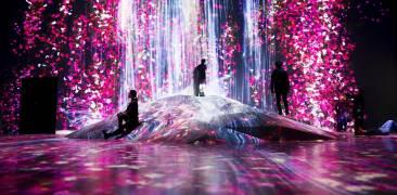 Ausstellung teamLab Borderless, pink-blaue Lichtinstallation mit staunenden Besuchern